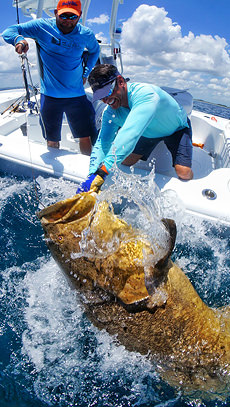Peter Miller with Goliath Grouper.